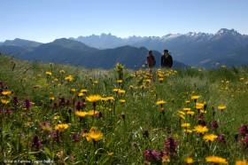 Wandern in Italien im Val di Fiemme