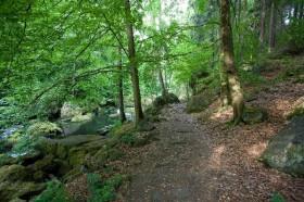 Wandern im Vogtland: Triebtal