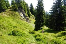Laufen Tirol