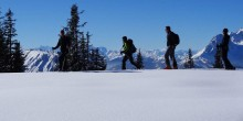 Februar 2014 Skitourencamp