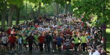 Kein Ende in Sicht: das Starterfeld beim Kassel Marathon.