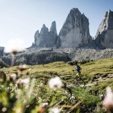 Transalpine Run 2015