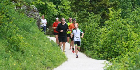 Strecke Narzissenlauf 2015