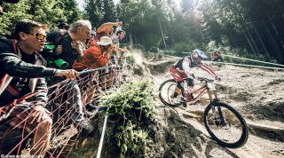 Downhill Mountainbiker in Leogang