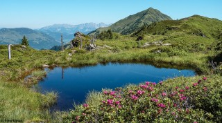 KAT-Walk-Kitzbueheler-Alpen