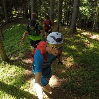Laufstrecke-durch-den-Wald