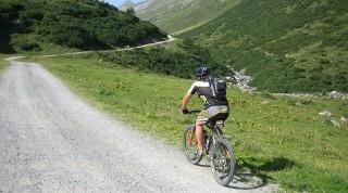Mountainbiker auf Schotterweg