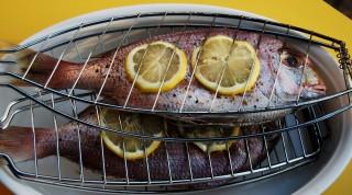Fisch am Grill