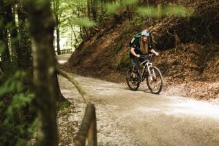 mountainbiken-saalfelden-wald