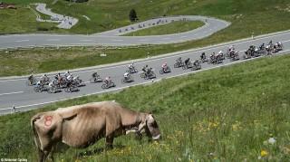 Rennradrennen-Transalp