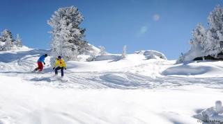 Snowboarden am Ahorn