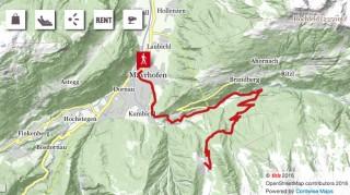 472 Alpenrose - Fellenberg