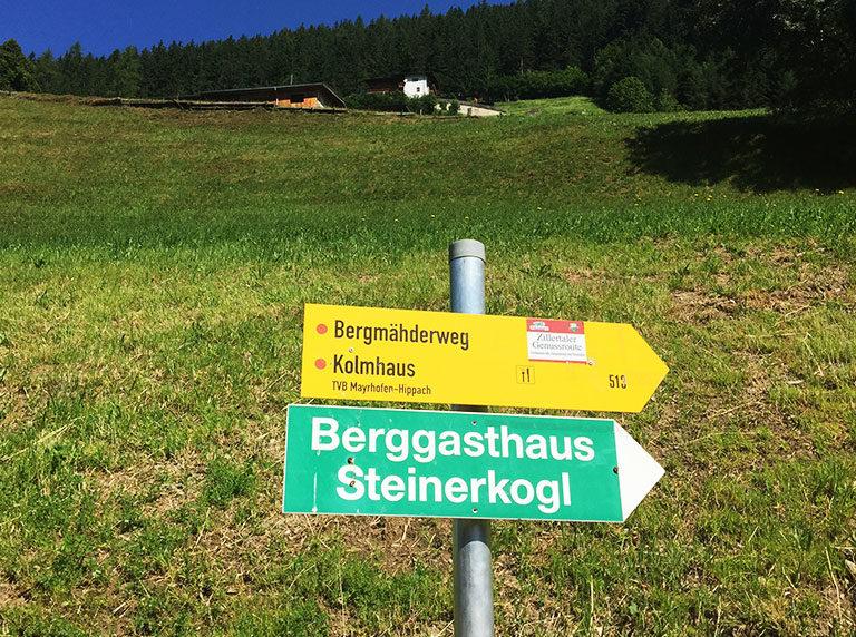 Bergmähderweg am Brandberg