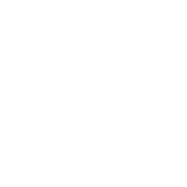 Salomon Running Events