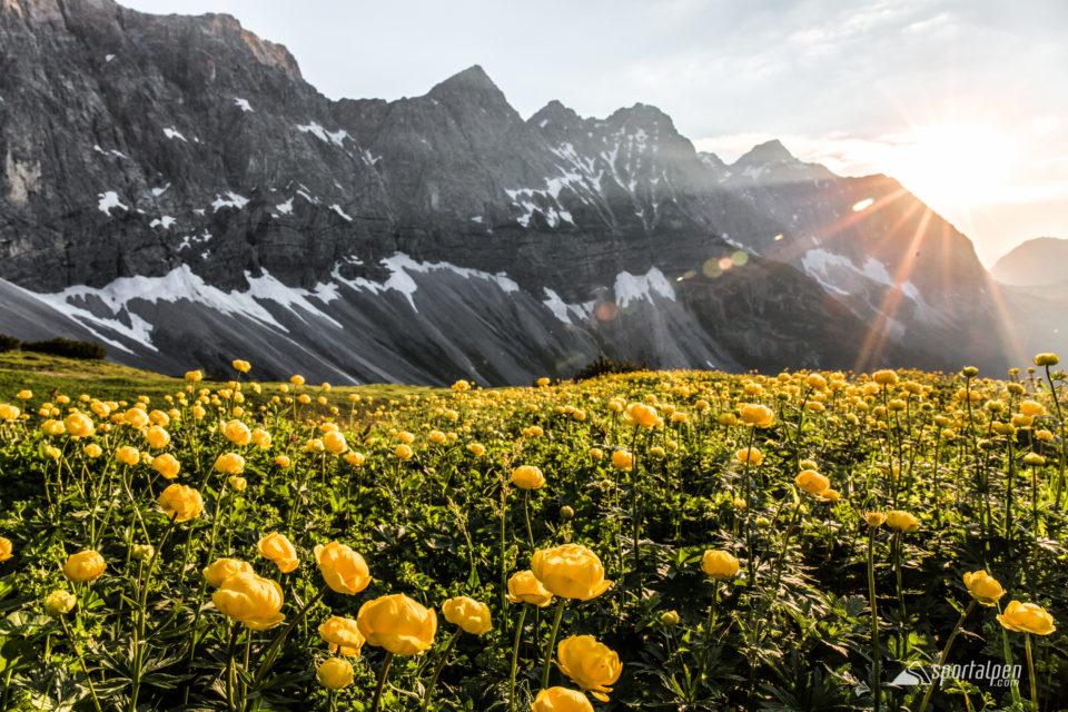 trailrunningcamp-2016-sonnenuntergang