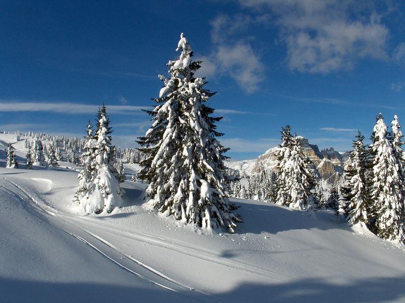 landschaft Alta badia