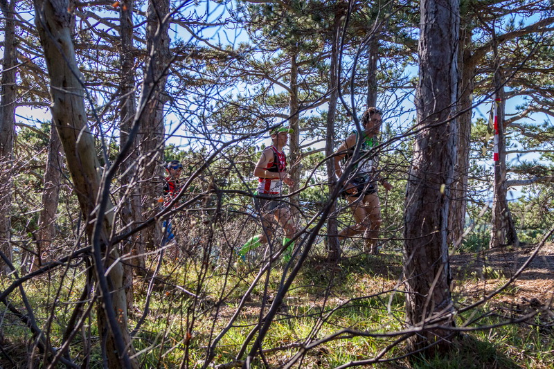 Lindkogel Trail