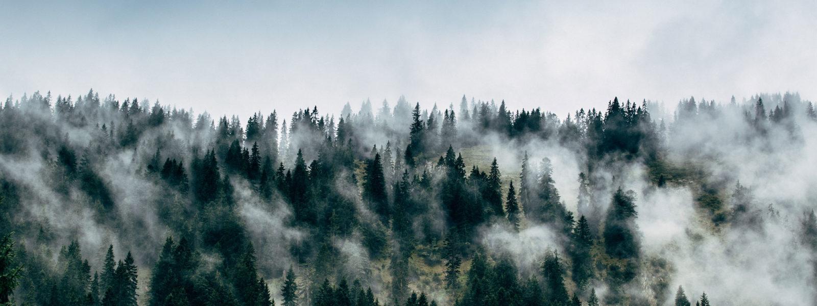 Natur-tirol-trailrunning