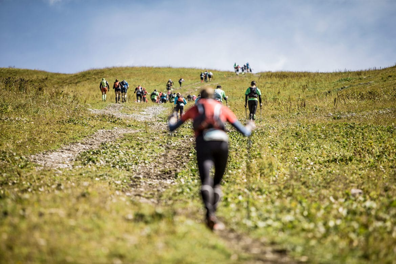 läufer-transalpine-run