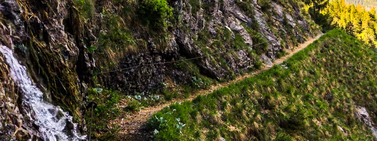 natur-trailrunning-bayern