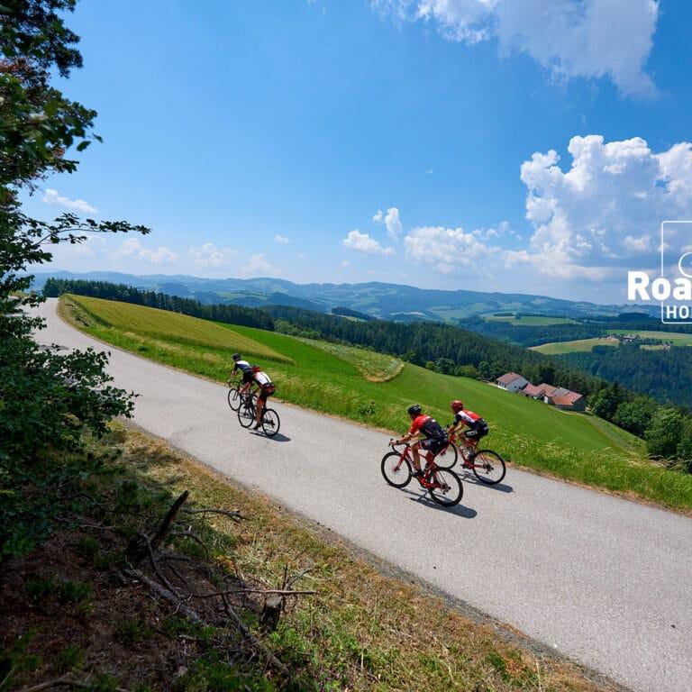 Roadbike-Holidays-Bucklige-Welt